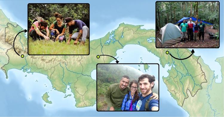 En Panamá investigamos plantas carnívoras en Alto Boquete, Valle de Antón y Cerro Chucantí.