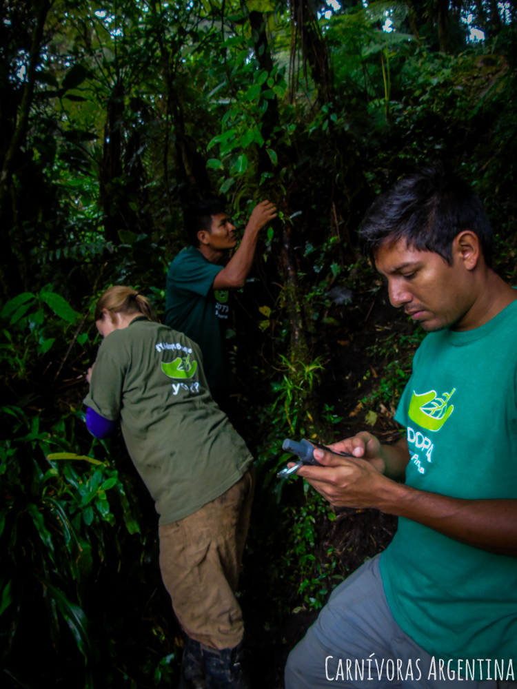 07 Darien - Reserva Natural Cerro Chucantí (70)-1