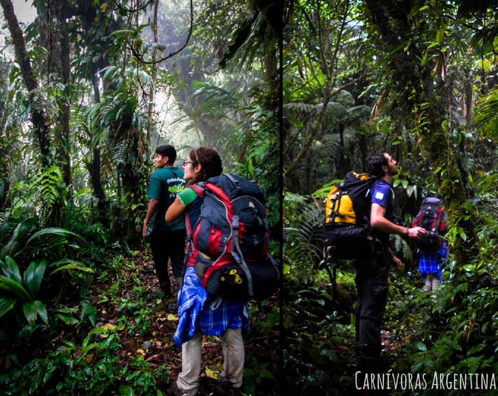 07 Darien - Reserva Natural Cerro Chucantí (85)-1-1