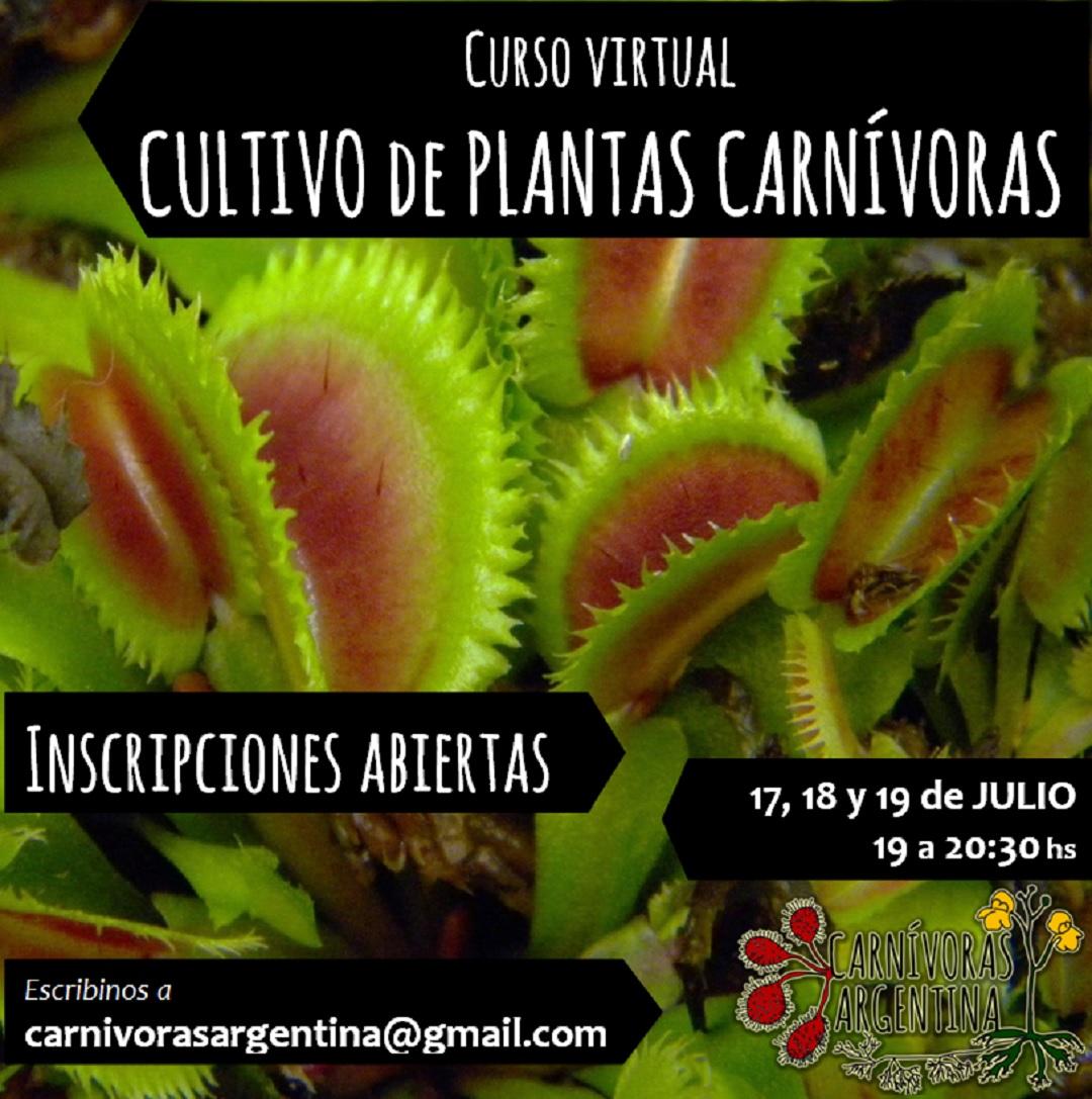Cultivo de plantas carnívoras
